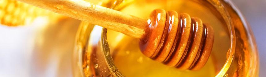 Miele tra proprietà e apicoltura biologica