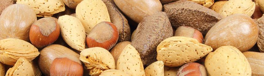 Frutta secca: mandorle e nocciole per il nostro benessere