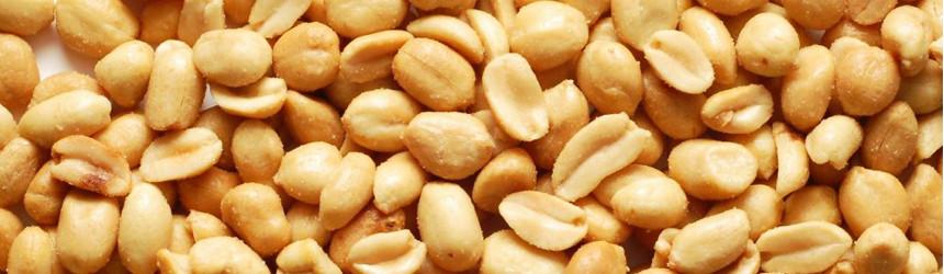 Uno snack che arriva da lontano: le Arachidi