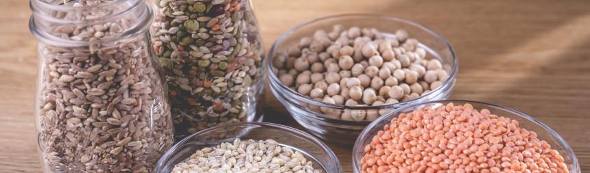 Cereali e orzo, scopriamone insieme le proprietà